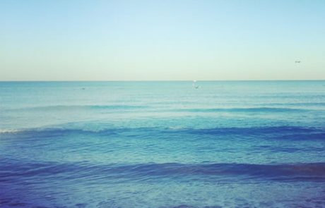 הים – עדנה טופר